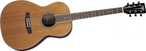 Best Acoustic Guitar For Blues Fingerpicking