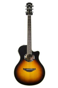 Best Thinline Acoustic Electric Guitar